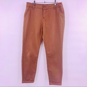 d. Jeans Light Brown Denim Ankle Skinny Jeans 10P